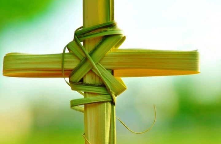 Top 3 Palm Sunday Connotations